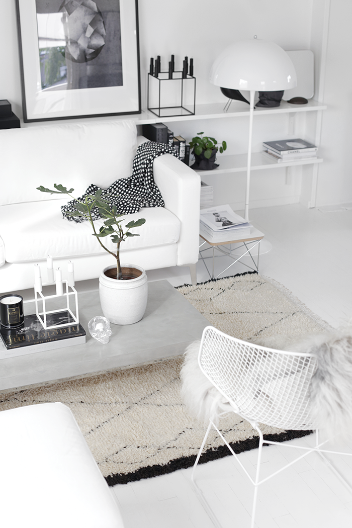 Living Room White Interior