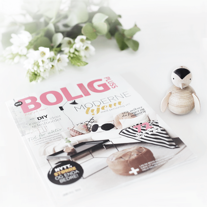 Bolig Pluss_blogg