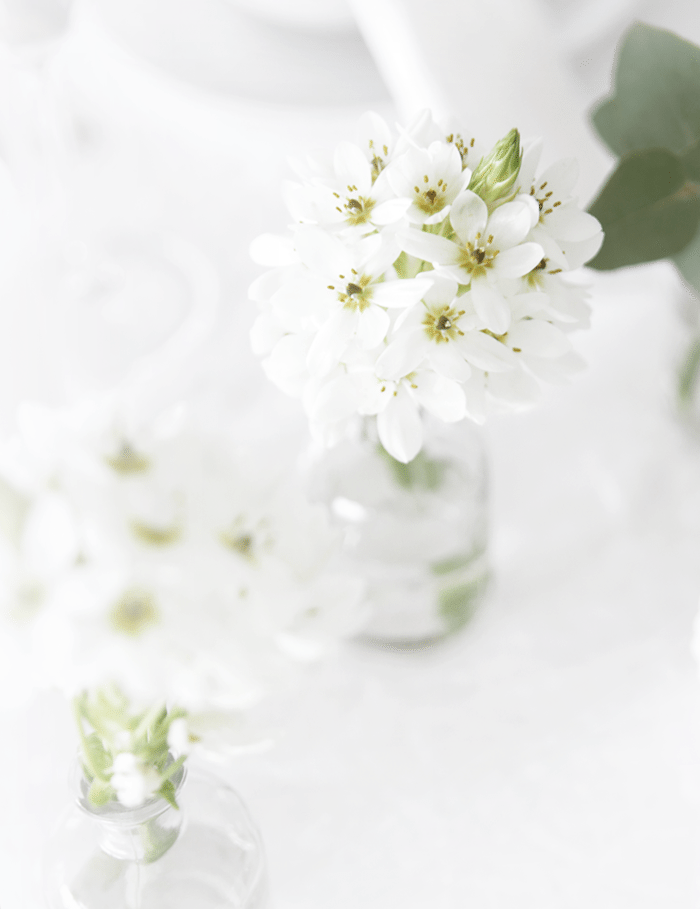 Flowers_tablesetting