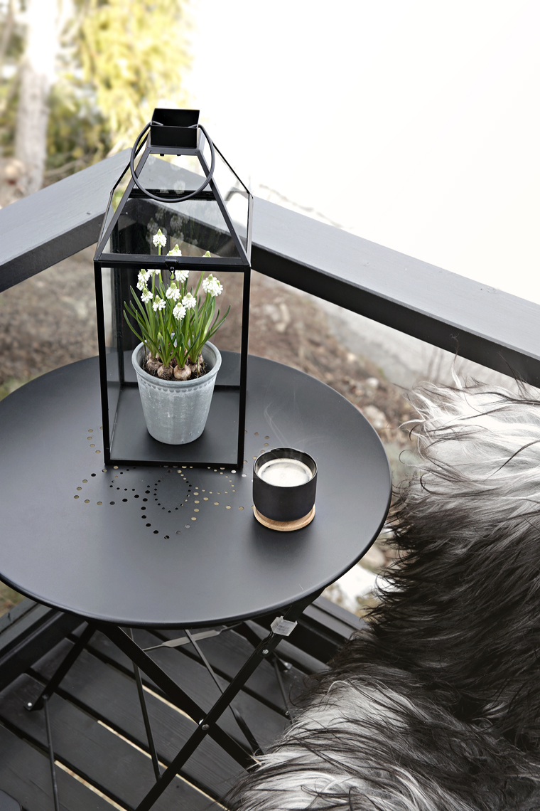 Spring tip: Flower in a lantern