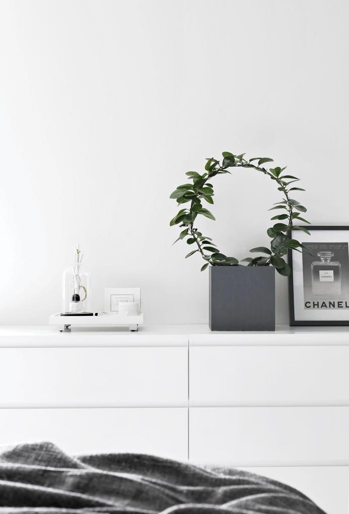 Plant-bedroom1