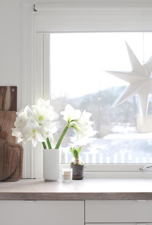 In my windows…
